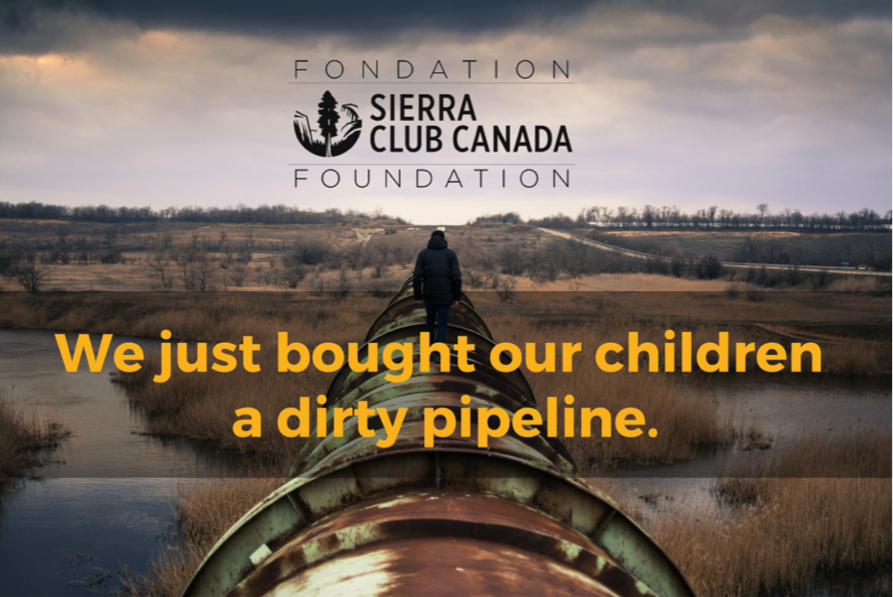 We just bought our children a dirty pipeline.
