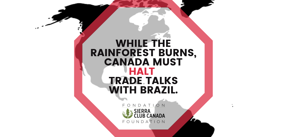 WHILE THE RAINFOREST BURNS, CANADA MUST HALT  TRADE TALKS WITH BRAZIL.
