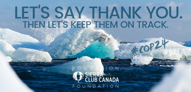 Let's say thank you. The let's keep them on track. #COP24