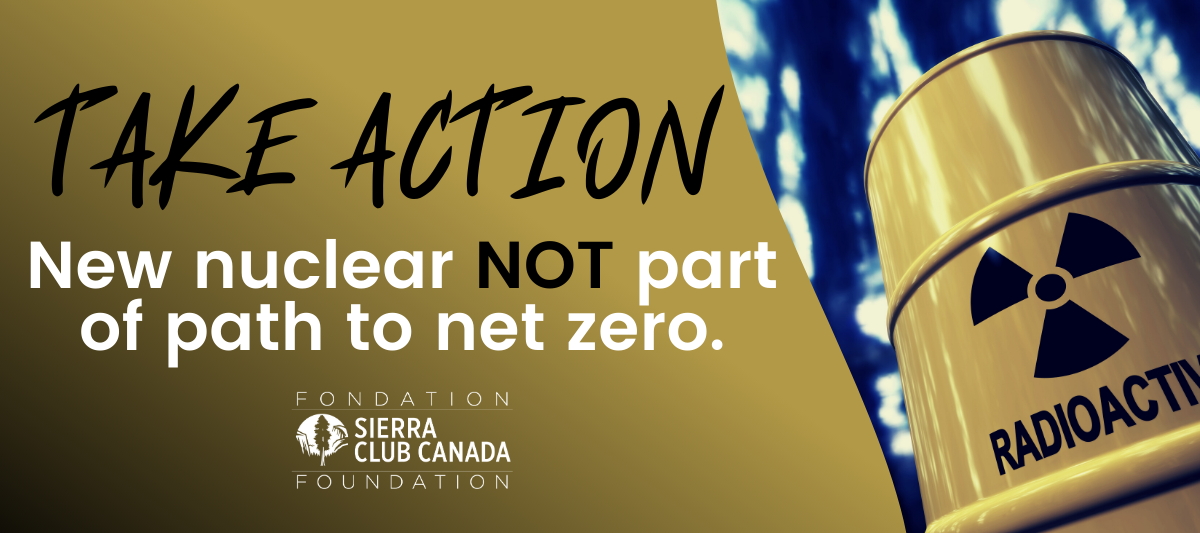 New nuclear is NOT part of the path to net zero.