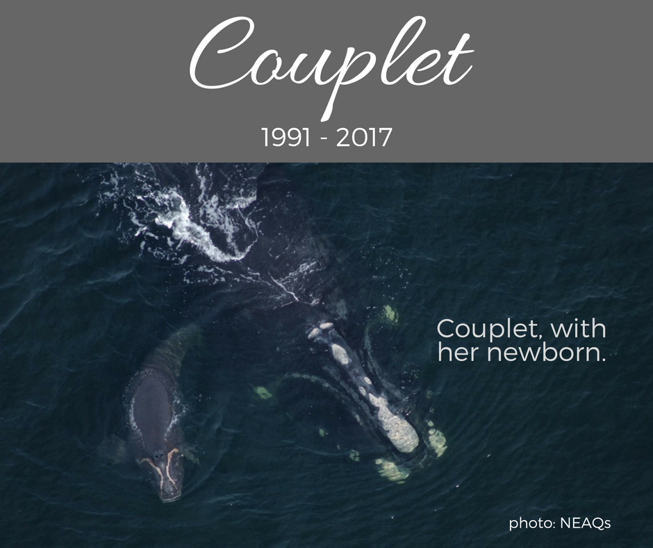 Couplet 1991-2017, with a newborn