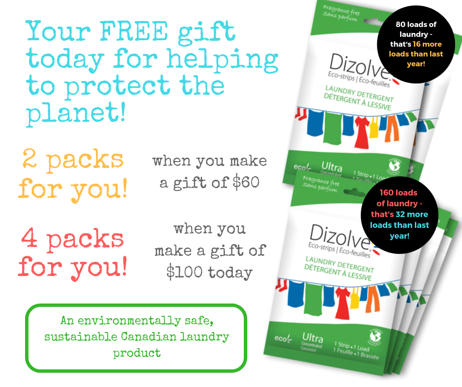 Your FREE gift of Dizolve Laundry Eco-Strips