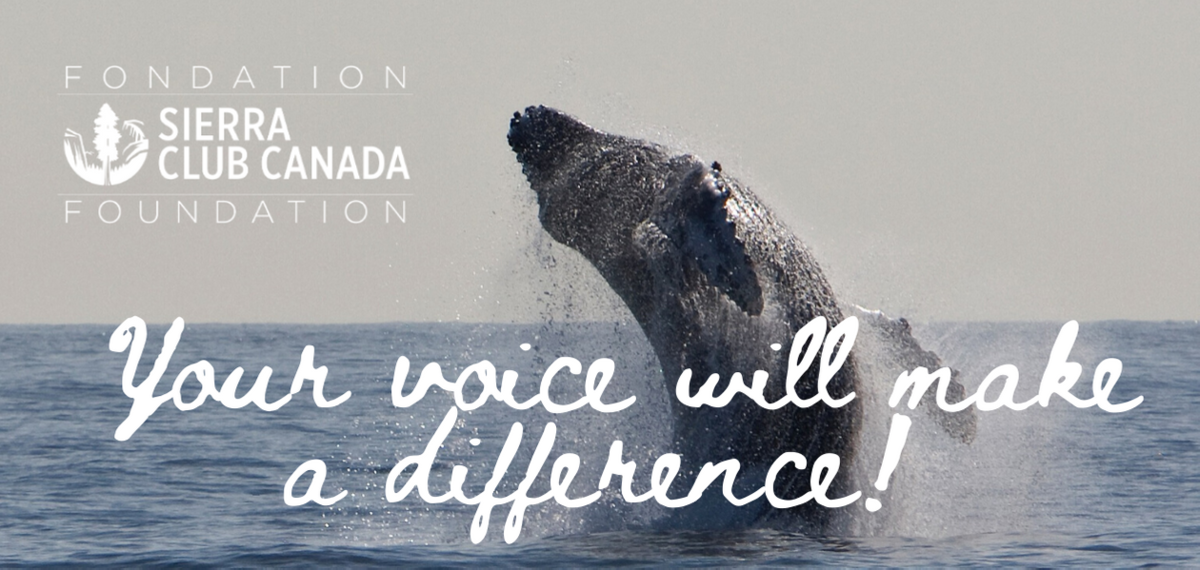 Join today - your voice will make a difference!