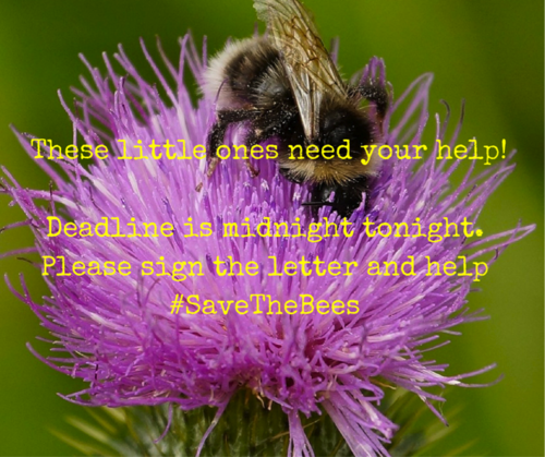 Deadline is midnight tonight - please sign the letter and help #SaveTheBees