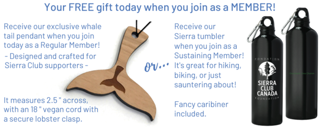 Your gift today when you join as a Member