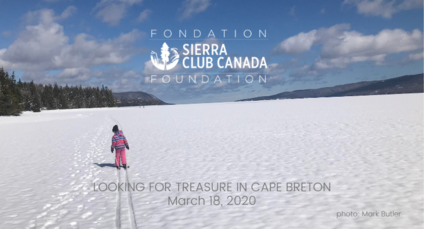 Looking for treasure in Cape Breton