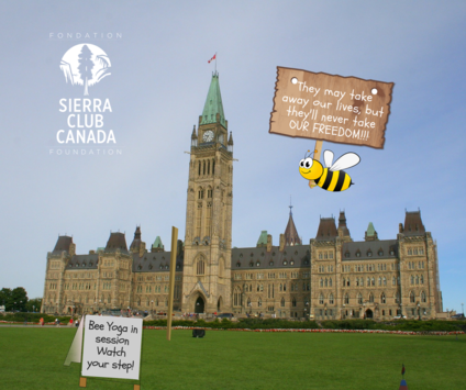 Bees plan protest on Parliament Hill
