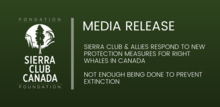 Media Release - Not Enough Being Done To Prevent Extinction