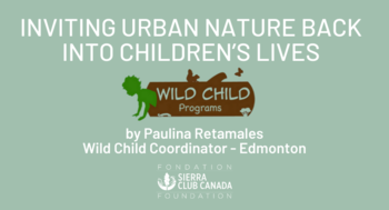 Inviting Urban Nature Back into Children's Lives