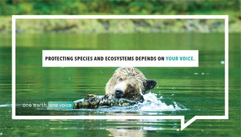 Protecting species and ecosystems depends on your voice!