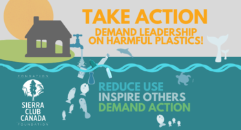 Stop Plastic Pollution In Its Tracks