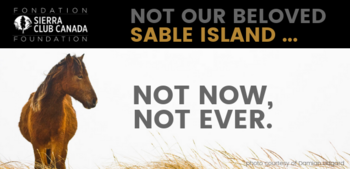 Not Sable Island. Not Now. Not Ever.