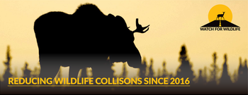 Watch for Wildlife - Preventing Wildlife Collisions Since 2016